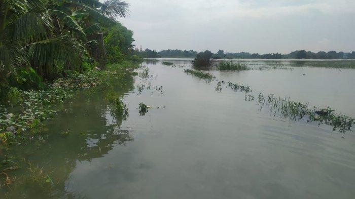 Gagal Panen Akibat Banjir Kali Lamong, Sejumlah Petani di Gresik Tak Dapat Ganti Rugi