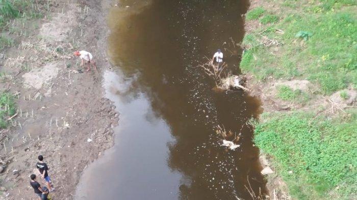 Heboh Banyak Ikan Mati Mengambang dan Busuk di Sungai di Blitar, Fakta Tercemar Dikuak: Ambil Sampel