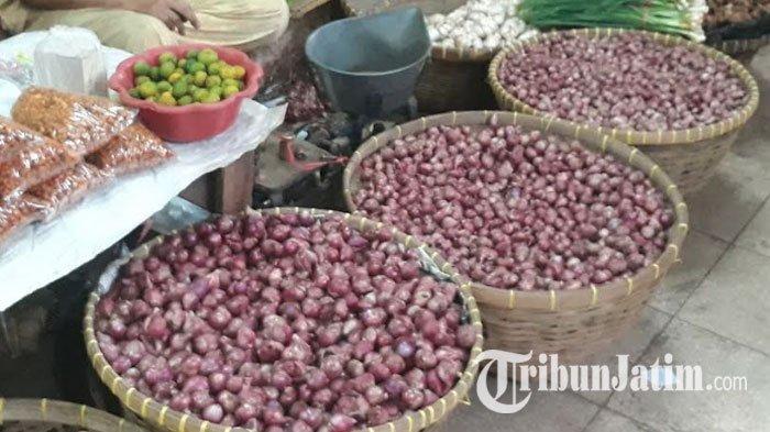 Petani Probolinggo Kecewa dengan Harga Bawang Merah Pasca Panen: Kurang Menggembirakan