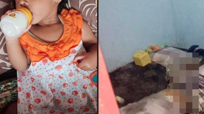 Jasad Ayah Ditunggui Bayi 14 Bulan Dimakamkan di TPU Pemkab Jember, Warga Bersihkan Rumah dari Bau