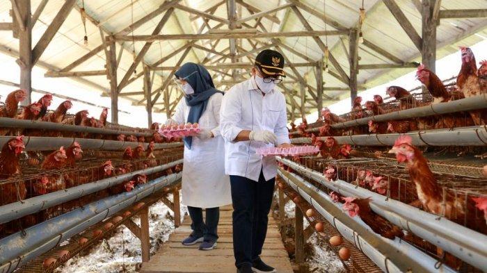 Pemkab Banyuwangi Berdayakan Pelaku Ekonomi Lokal Guna Sediakan Nutrisi Bagi Tenaga Kesehatan