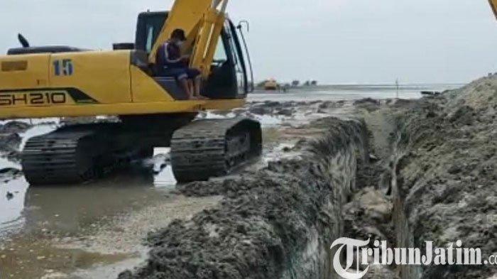 Dua Eskavator Butuh Waktu 7 Jam Mengubur 48 Ekor Ikan Paus Mati di Pesisir Bangkalan