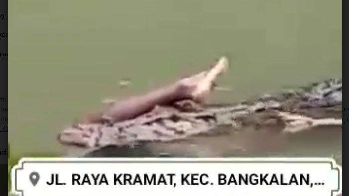 Beredar Video Buaya Makan Manusia di Sungai Desa Kramat, Kapolres Bangkalan : Itu Hoaks