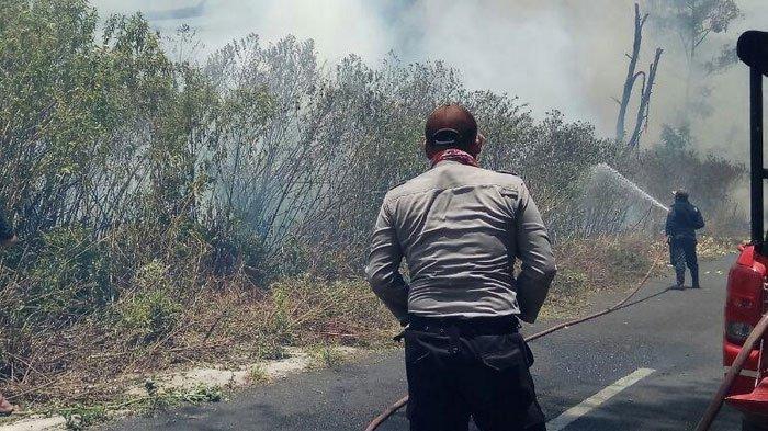 Pendakian Kawah Ijen Ditutup, BPPD Banyuwangi Cegah Kebakaran Meluas