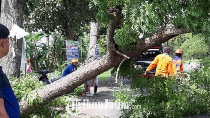 Puting Beliung Terjang Jombang, 7 Rumah Rusak, Tembok Milik Sebuah Pesantren Roboh