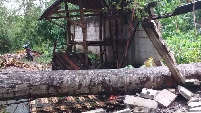 Angin Puting Beliung Terjang Kabupaten Kediri 7 Rumah Dilaporkan Rusak Parah