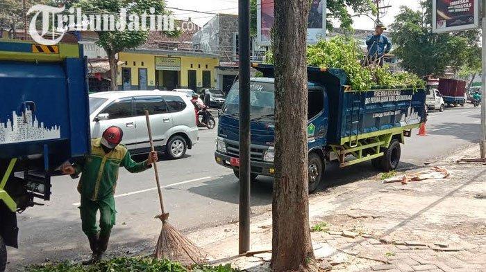 Cegah Pohon Tumbang, DLH Kota Malang Gencarkan Patroli Polisi Taman