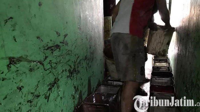 Selama Bulan Ramadan, Produsen Cincau di Koa Malang Kebanjiran Pesanan