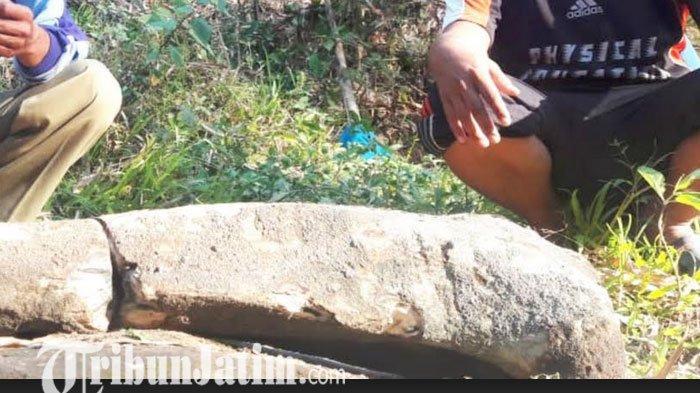 Pencari Pasir Temukan Tulang Raksasa di Kali Ketonggo Ngawi