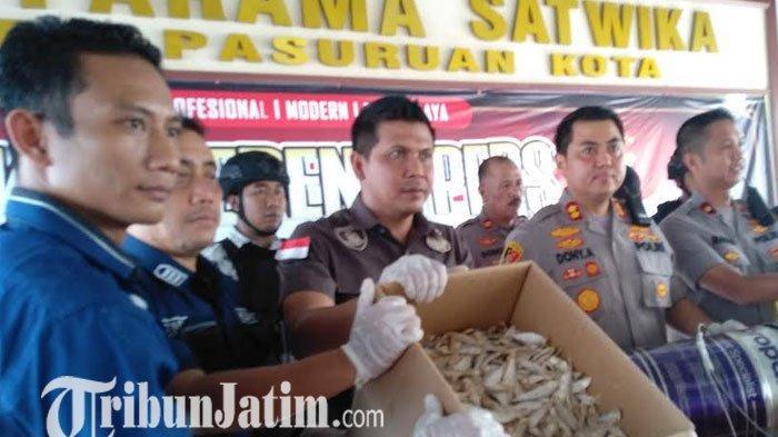 BREAKING NEWS -  Polres Pasuruan Kota Tangkap Pemasok Ikan Asin Berformalin