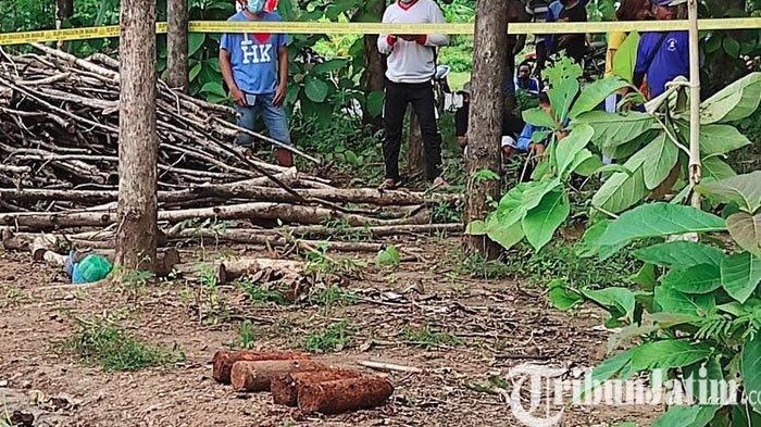 Petani Ponorogo Temukan Mortir di Ladangnya: Tahun 60-an Pernah Ditemukan Lebih Besar