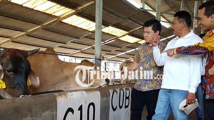 Dukung Sektor Produktif, BCA Salurkan KUR Rp 20 Miliar ke Perusahaan di Probolinggo