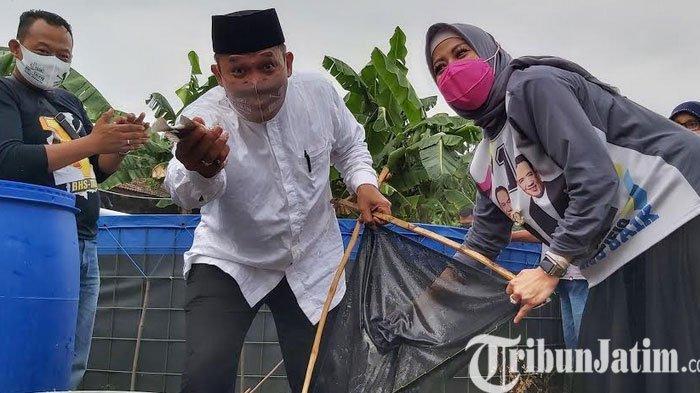Calon Bupati Sidoarjo, BHS Ikut Panen Ikan Mujair Bareng Warga