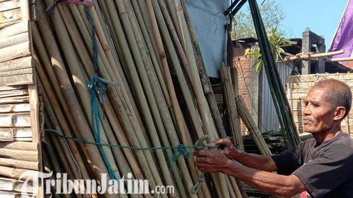 ilustrasi bambu kuning.