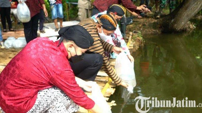 Bupati Trenggalek Tebar Benih Ikan di Embung Bekas Galian Tanah