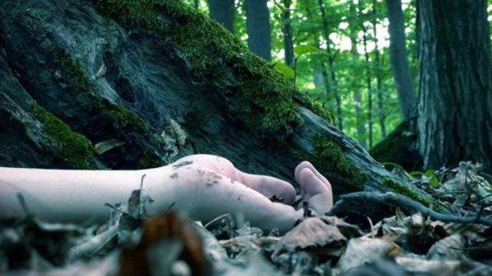 Pilu Detik-detik Istri Diperkosa 3 Pria Depan Suami, Diseret ke Hutan, Direkam, 2 Pelaku Masih Buron