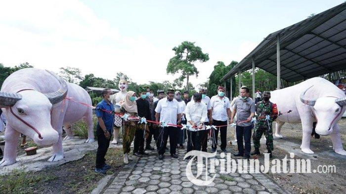 New Antogan, Wisata Kebangsaan Pengingat Para Pejuang di Banyuwangi, Tempat Bertapa Rempeg Jogopati