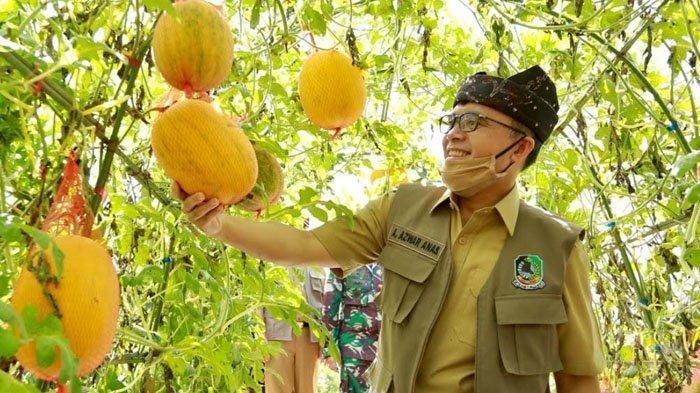 Agrowisata Tamansuruh Banyuwangi Siap Sambut New Normal, Sediakan Fasilitas hingga Batasi Pengunjung