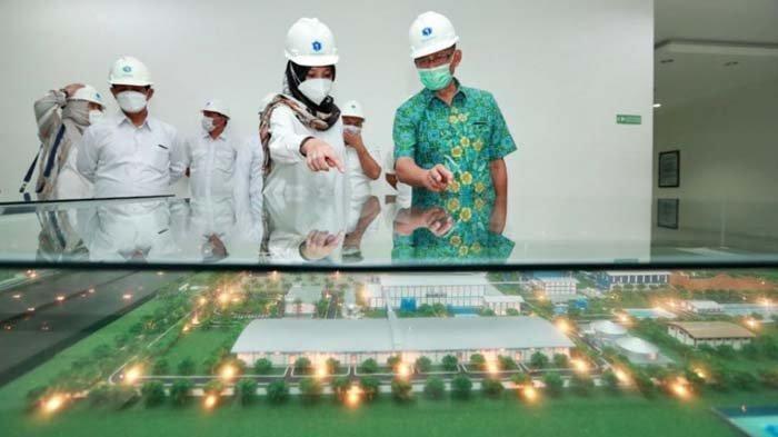 PT IGG Targetkan Produksi 61.000 Ton Gula, Bupati Banyuwangi Ipuk Ingin Petani Diberdayakan
