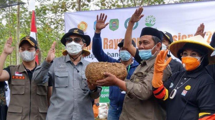 Ikuti Panen Raya Porang di Trenggalek, Wamen Pertanian Ingatkan Pentingnya Hilirisasi Produk