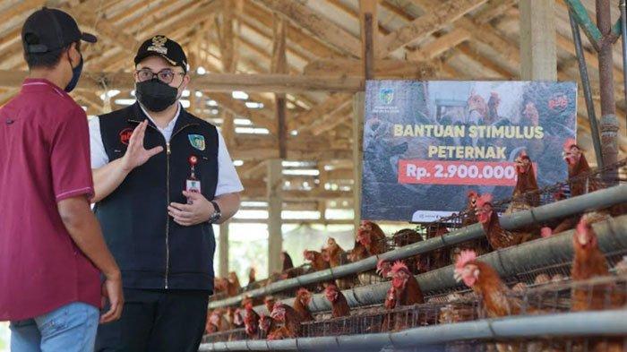 Bupati Kediri Kucurkan Bantuan Rp 2,9 Juta untuk Peternak Terdampak Pandemi Covid-19