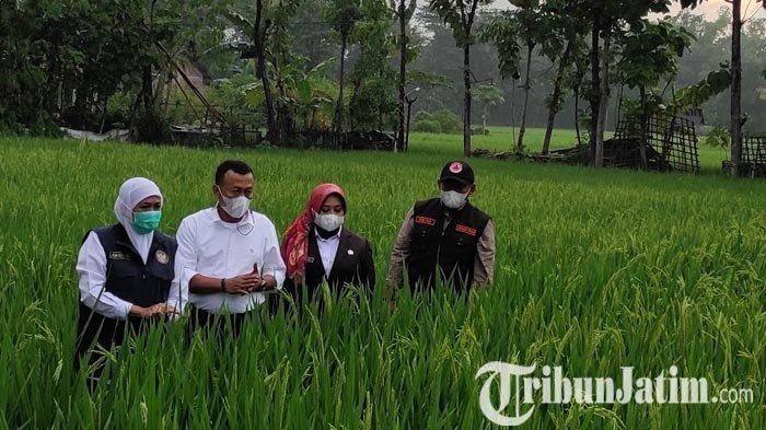 Tingkatan Kesejahteraan Petani, Bupati Sugiri Kawal PSN Bendungan Bendo Ponorogo