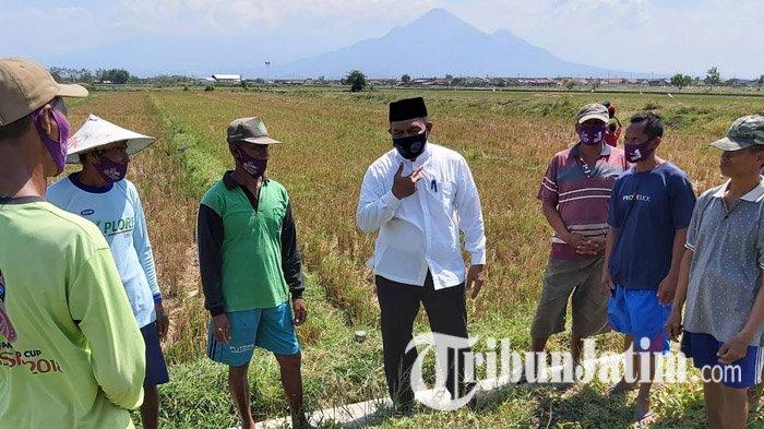 BHS Blusukan ke Tanggulangin Sidoarjo, Disambati Petani Soal Sulitnya Dapat Pupuk & Langganan Banjir