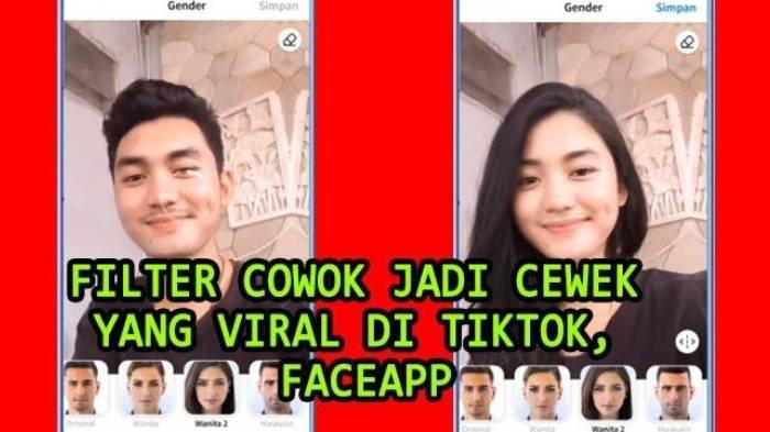 Cara Ubah Wajah Cowok Jadi Cewek, Lagi Viral di TikTok, Pakai Filter Edit Wajah di Aplikasi FaceApp
