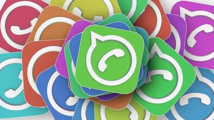 Cukup Pakai 1 Aplikasi, Berikut Cara Mudah Melihat Stalker WhatsApp, Bisa Tahu Nama hingga Foto