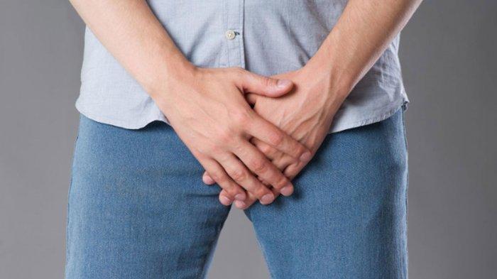 Mengenal Kutu Kemaluan yang Bentuknya Mirip Kepiting, Lakukan 7 Hal Ini Kalau Terinfeksi