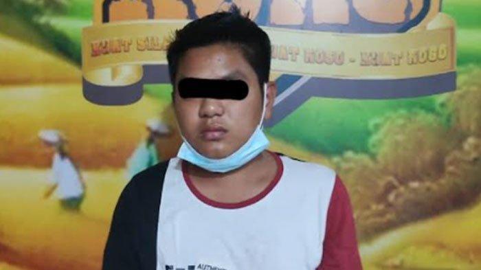 Tergiur Untung, Pemuda di Lumajang Edarkan Pil Koplo, Pelanggannya Anak Balap Liar
