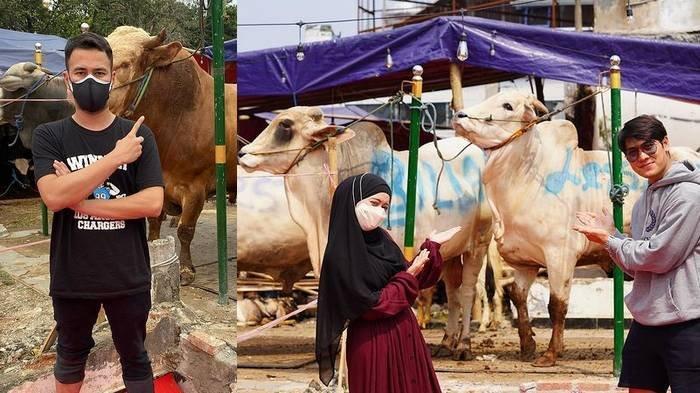 Daftar Artis yang Borong Hewan Kurban di Momen Idul Adha: Raffi Beli 10 Sapi, Aurel Beli 23 Kambing