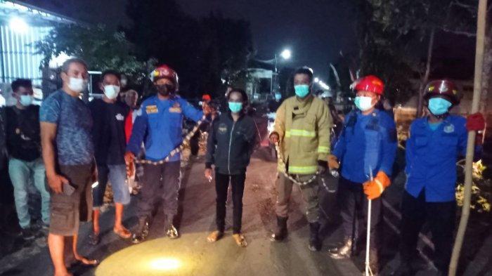 Damkar Evakuasi Dua Ekor Ular Weling di Rumah Warga Trenggalek