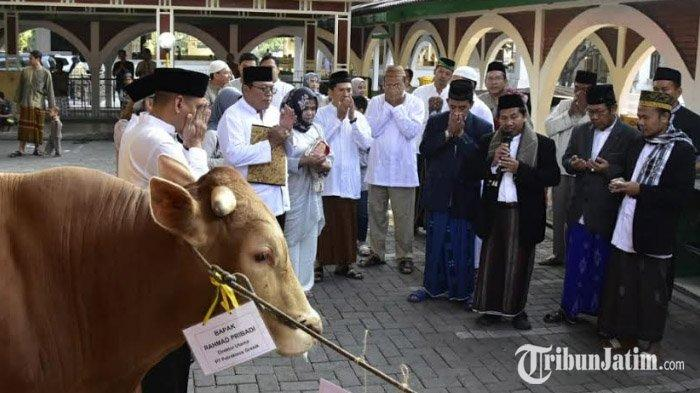 PT Petrokimia Gresik Serahkan Ratusan Hewan Kurban Senilai Rp 682 Juta ke Masjid Sekitar Gresik