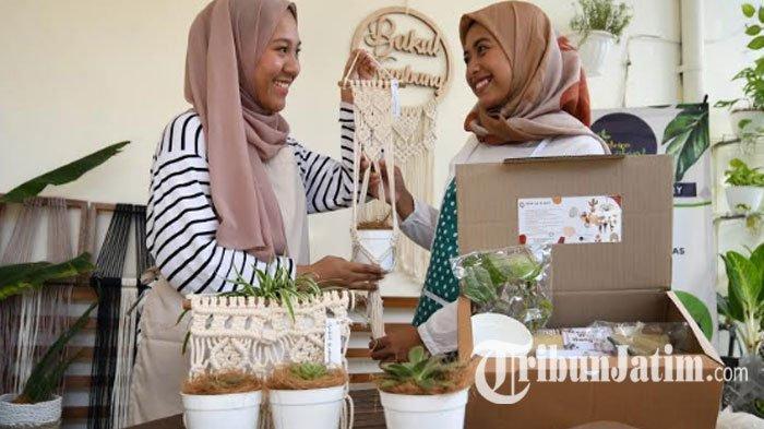 Elvira Plant Luncurkan DIY Plant Kit Vol 2, Program 'Next Level' Belajar Menanam Tanaman Hias