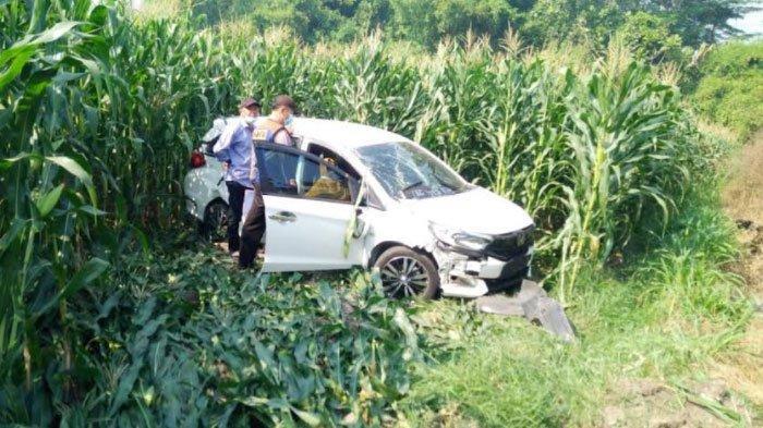 Penyakit Kambuh, Pengemudi di Kediri Gagal Kendalikan Mobil hingga Terperosok ke Ladang Jagung