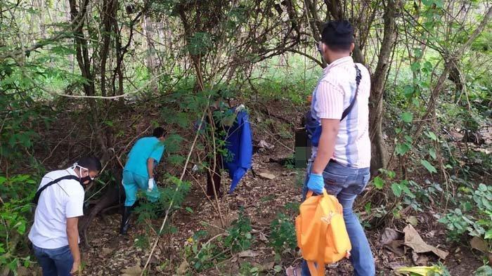 Terungkap Sosok Mayat yang Ditemukan Menggantung di Akar Pohon Hutan Tuban, Ternyata Warga Lamongan