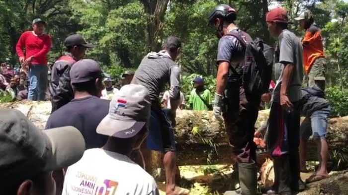 Hati-hati Jalur Gunung Gumitir Jember-Banyuwangi Rawan Pohon Tumbang dan Tanah Longsor