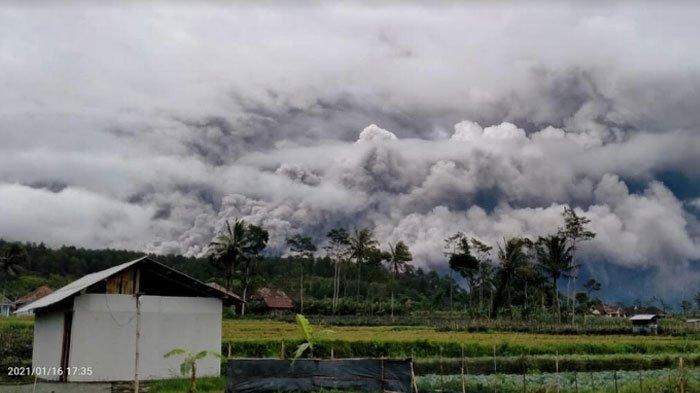 BREAKING NEWS - Gunung Semeru Meletus, Petang Tadi
