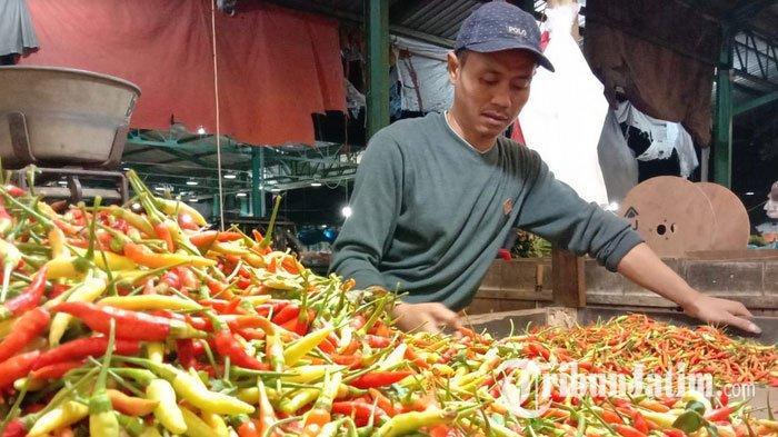 Stok Cabai Diprediksi Surplus Sampai Hari Raya Idul Fitri