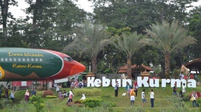 Harga Tiket Masuk Wisata Petik Kurma, Nikmati Aneka Olahan Pohon Kurma hingga Beli Batik Motif Kurma