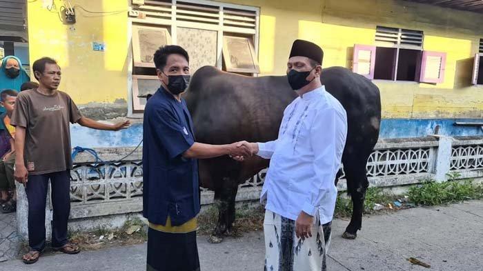 Partai Nasdem Gresik Salurkan 2 Ekor Sapi 1 Ton ke Masjid Desa Banyuwangi: Mari Berbuat Kebaikan
