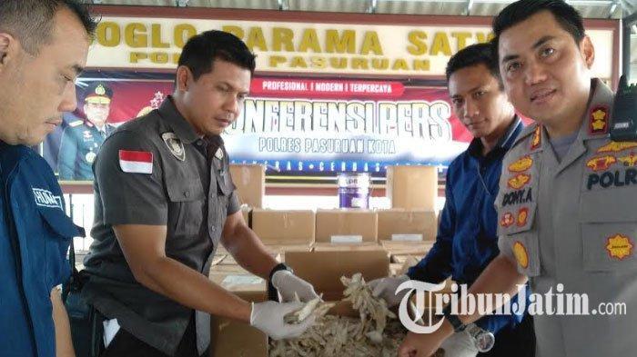 Modus Pemasok Ikan Asin Berformalin di Pasuruan Dikuak Polisi, Formalin Dipakai saat Musim Hujan
