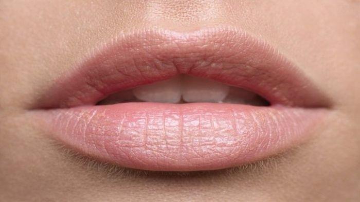 TIPS CANTIK HARI INI - Ikuti Tips Membuat Bibir Merah Merona Alami, Tampil Cantik Tanpa Lisptik