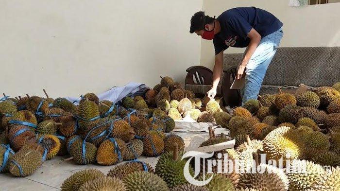 Daripada Rebahan Saja, Mahasiswa di Trenggalek Jual Durian untuk Donasi Penanggulangan Covid-19