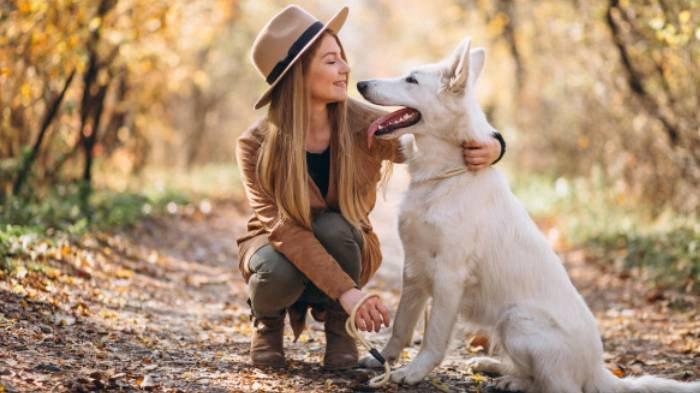 Ilustrasi mimpi mendapat anjing putih.