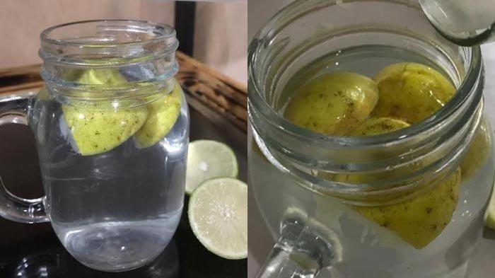 Ketahui KhasiatInfused Lemon & Jeruk Beserta Kandungan Antioksidannya, Bermanfaat Buat Sistem Imun