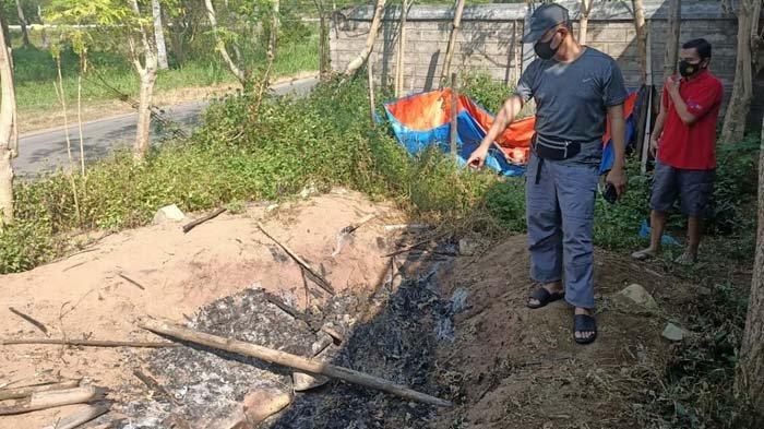 Kantongi Terduga Pelaku Pembantaian Anjing di Pacitan, Polisi: Dilakukan Bersama-sama