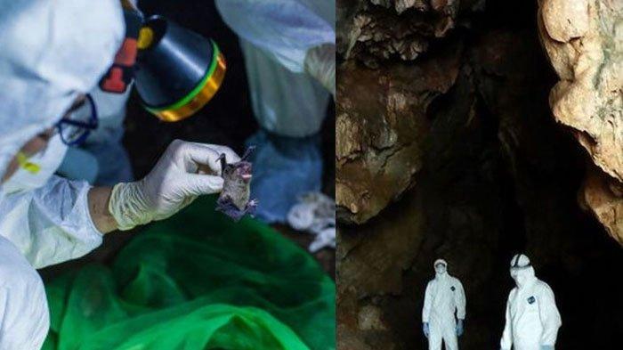 'Rahasia' Hidup Orang-orang China yang Kebal dari Virus Corona, Darahnya Beda, Ilmuwan Sampai Kaget