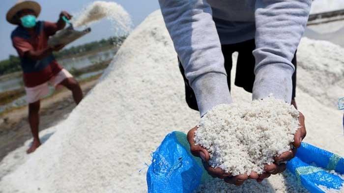 Produksi Garam di Surabaya Capai 3.377 Ton, Begini Upaya Pemkot untuk Naikkan Hasil